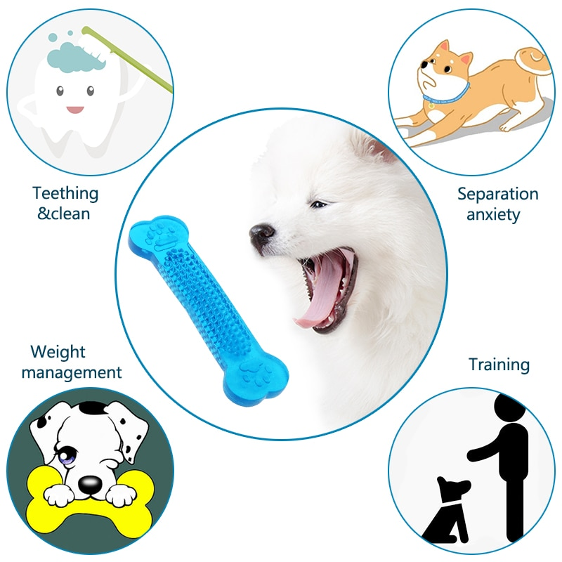 Bone Chew Toy for Dogs