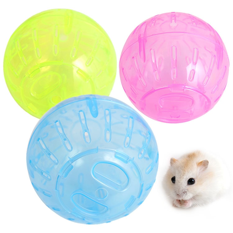 Ball Toy for Small Pets